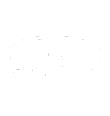 logo-bgn.png